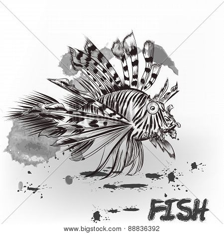 Hand Drawn Sea Fish With Ink Spots