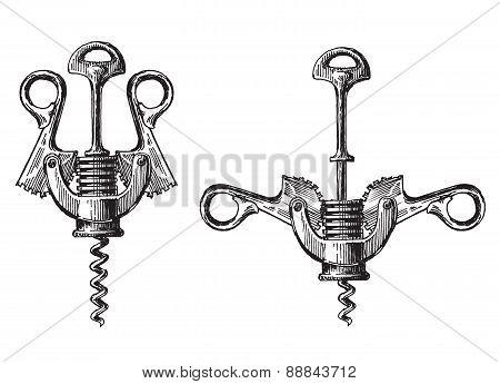 corkscrew on a white background. illustration, sketch