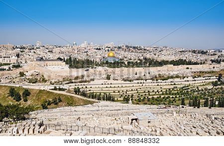 Jerusalem Old City View
