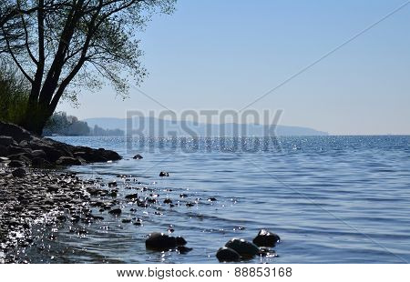 Beaches of Lake Constance