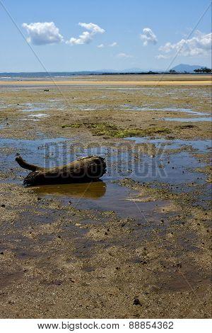 Lokobe Reserve Coastline And Sand