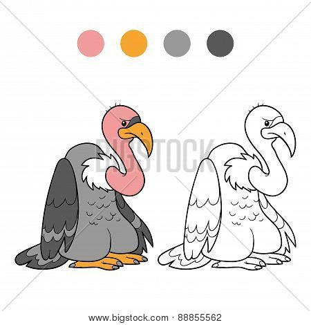 Coloring Book (vulture)