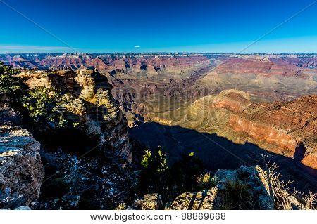 The Magnificent Multicolored Grand Canyon In Arizona