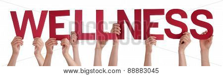 Many People Hands Holding Red Straight Word Wellness