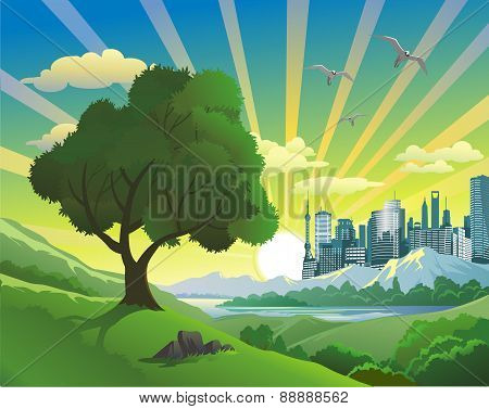 Landscape - Tree On The Hill [