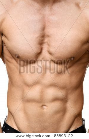 Abdominal Muscle Of Young Man