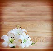image of white lily  - White lilies isolated on wooden background - JPG