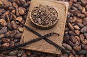 stock photo of cocoa beans  - Chocolate shavings vanilla beans and cocoa beans - JPG