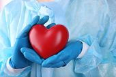 stock photo of heart surgery  - Decorative heart in doctors hands - JPG