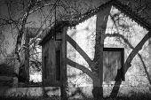 pic of abandoned house  - monochrome of a country house in an abandoned village - JPG