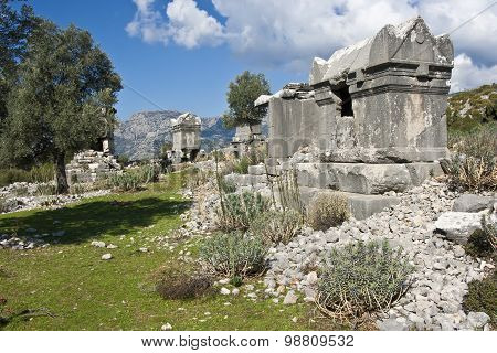 Ruins of ancient tombs in Sidyma,Turkey