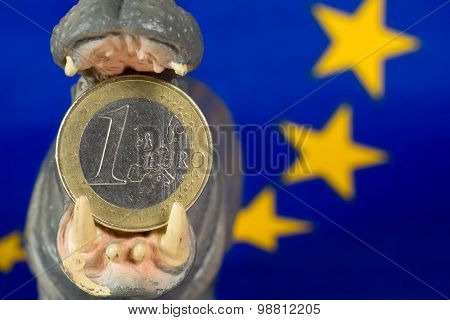 One Euro Coin In Mouth Of Hippo Figurine