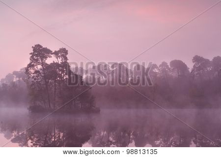 Beautiful Purple Sunrise On Wild Lake