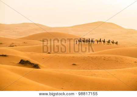 Dunes Erg Chebbi near Merzouga, Morocco -Camels caravan during a tour into the erg