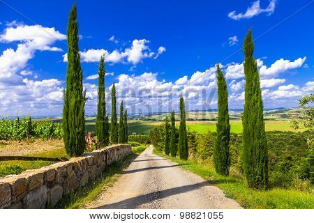 Landscapes of Tuscany, alley with cypresses. Italy