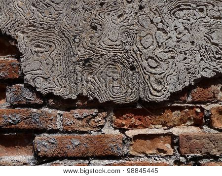 Gnarly Whorled Concrete And Brick Textured Wall In Asian Alleyway