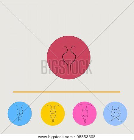 Art drawing set of uterus icon
