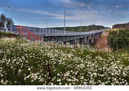 Field Flowers In Meadow Near Unfinished Steel Highway Bridge.