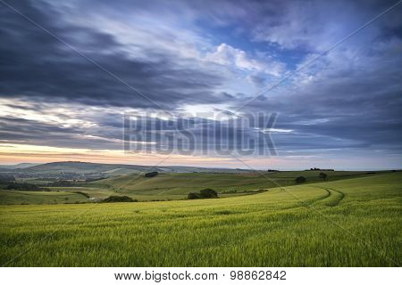 Beautiful Summer Sunset Landscape Steyning Bowl On South Downs