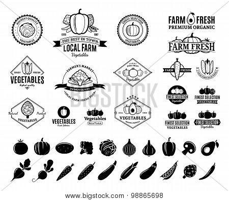 Vegetables Labels, Vegetables Icons And Design Elements