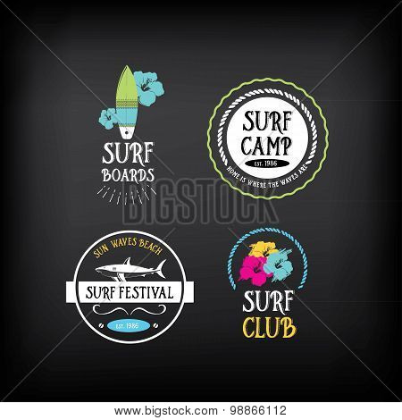 Surf vintage elements. Retro logo board. Vector with graphic.