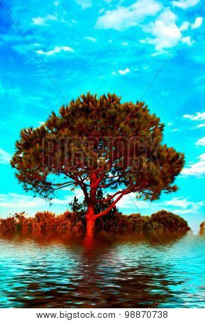 Trees And Grassland In The Flood, Digital Painting With A Canvas Texture