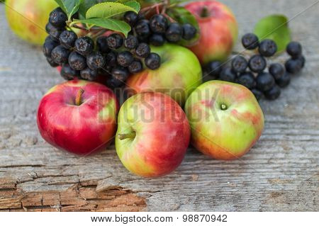 Chokeberry and apples