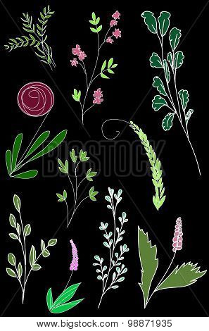 Vector Grass Background, Floral Pattern, Plants Ornament
