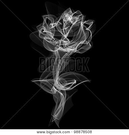 Realistic Smokey Rose Isolated on Black
