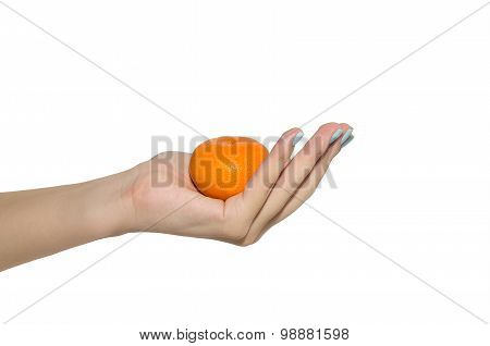 Mandarin In Woman Hand