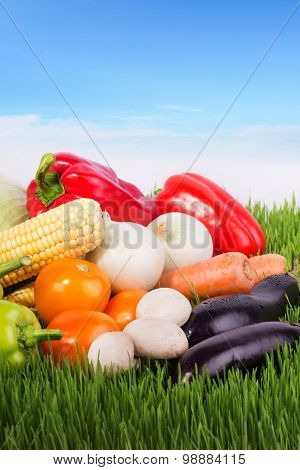 Fresh Vegetables On The Green Grass Against Blue Sky