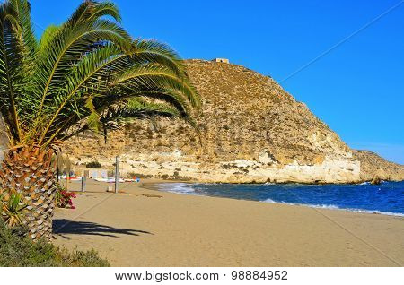 a view of the Beach of Agua Amarga in the Cabo de Gata-Nijar Natural Park, in the Province of Almeria, in Spain