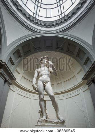 FLORENCE- JUNE 23: David by Michelangelo on June 23,2015 in Galleria dell'Accademia in Florence. Italy.