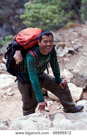 Sherpa Trekking Guide