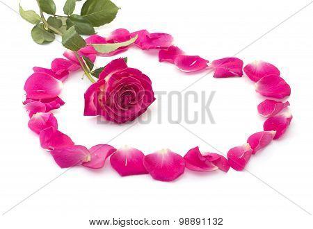 The Red Rose Surrounded With Petals Of Roses