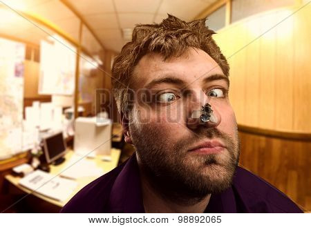 Businessman looking at the fly