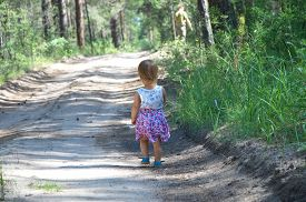 stock photo of girl walking away  - Little girl walking away by the field road in the forest - JPG