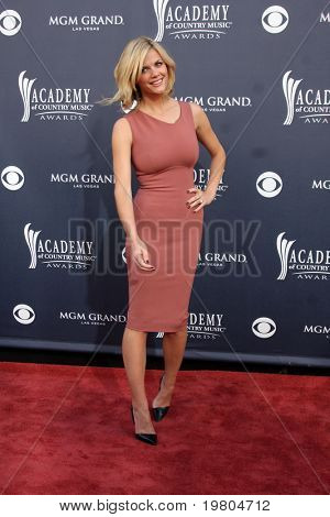 LAS VEGAS - APR 3:  Brooklyn Decker arriving at the Academy of Country Music Awards 2011 at MGM Grand Garden Arena on April 3, 2011 in Las Vegas, NV.
