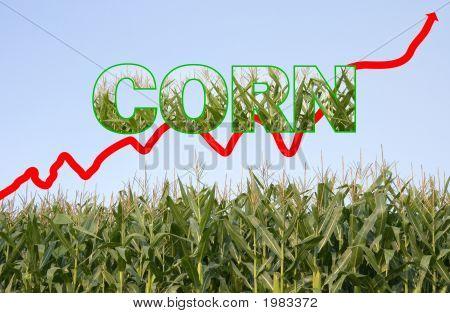 Corn - Bio Fuel Chart