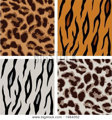 Leopard And Tiger Patterns