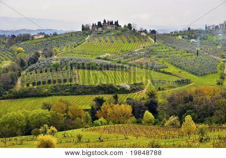 Paisaje de Tuscany, Italia