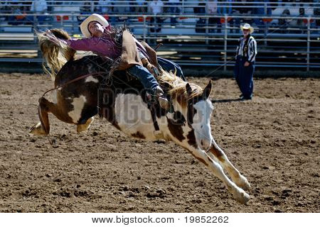 APACHE JUNCTION, AZ - FEBRUARY 28: A competitor rides a bucking horse in the bareback competition at the Lost Dutchman Days Rodeo on February 28, 2009 in Apache Junction, AZ.