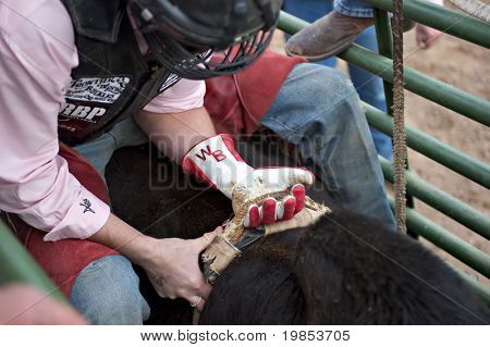 APACHE JUNCTION, AZ - FEBRUARY 26: A cowboy prepares to ride a bucking bull in the bull riding competition at the Lost Dutchman Days Rodeo on February 26, 2010 in Apache Junction, Arizona.