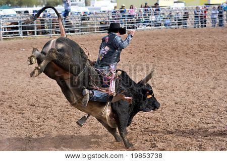APACHE JUNCTION, AZ - FEBRUARY 27: A cowboy rides a bucking bull in the bull riding competition at the Lost Dutchman Days Rodeo on February 27, 2010 in Apache Junction, Arizona.