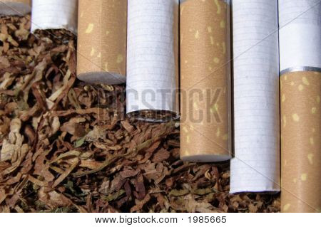 Tobacco And Cigarete