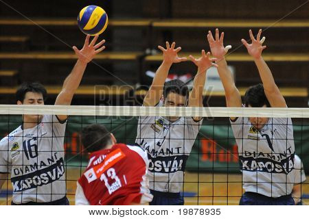 KAPOSVAR, HUNGARY - JANUARY 22: Unidentified players in action at a Middle European League volleyball game Kaposvar (HUN) vs. HotVolleys Wien (AUT), January 22, 2010 in Kaposvar, Hungary.