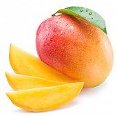 Mango fruit and mango slices. Isolated on a white background. poster