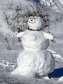 foto of vinnitsa  - This is a snowman Christmas a scene - JPG