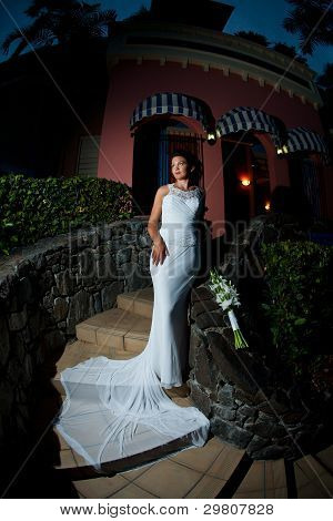 Bride Standing On Stairs With Dress Extended Down The Stairs