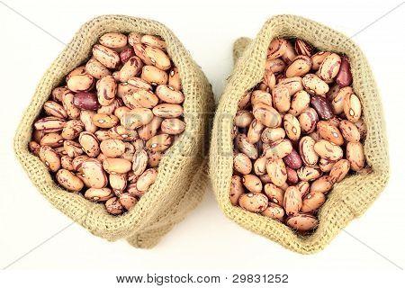 Romano Beans.